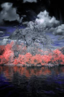 Lost Sky by helios-spada