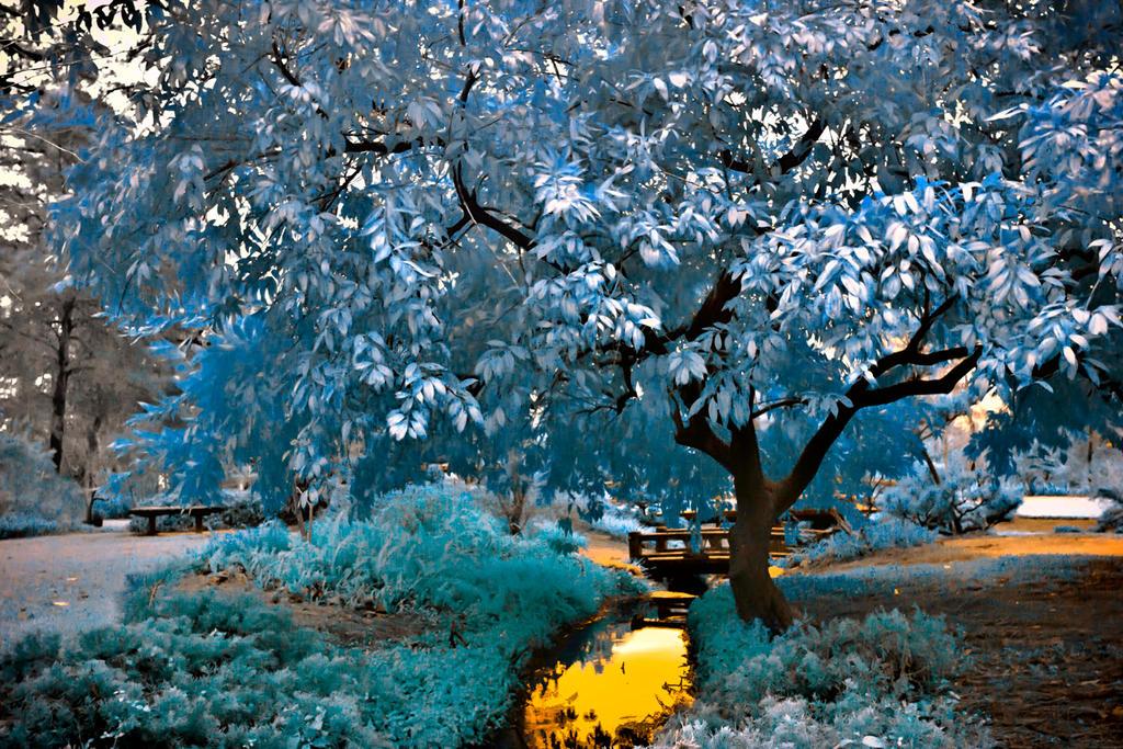 Blue Tree by helios-spada