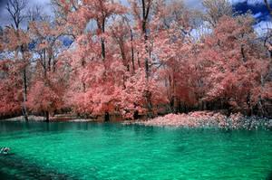 Fishing Pond by helios-spada