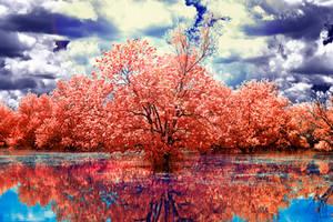 Rainbow Water by helios-spada