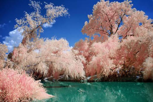 Jade River