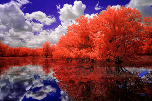 A Red Day by helios-spada
