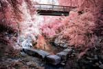 The Bridge by helios-spada
