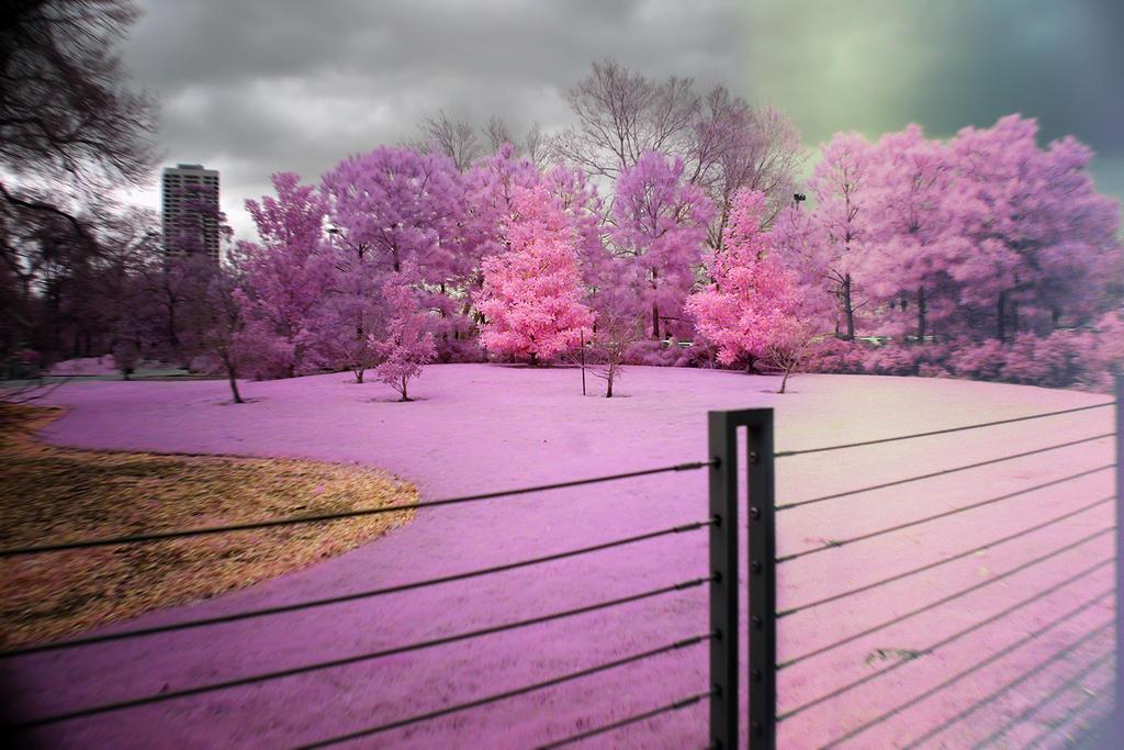 On The Fence by helios-spada
