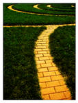 Follow the yellow brick road by x-Laura-Rose-x