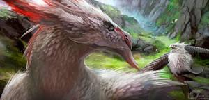 Dragon SOKreiN