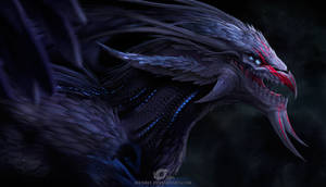 Dragon Black SOKreiN
