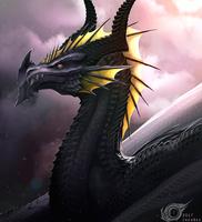 Rognar Raven by IrenBee