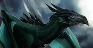 Dragon Vermaks