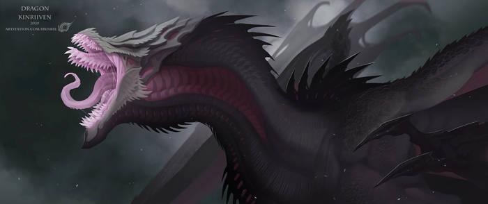 Dragon KinRiiVEN