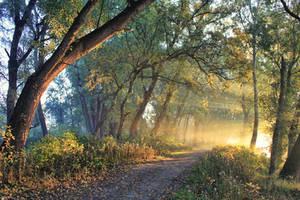 road to the better world by NemanjaJ