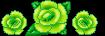 Green roses  (F2U) by XUranusX