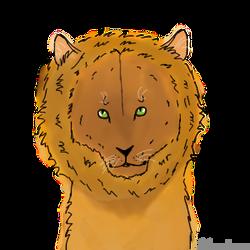 Lion!!!