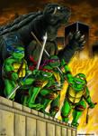 Turtle Power!  Commission
