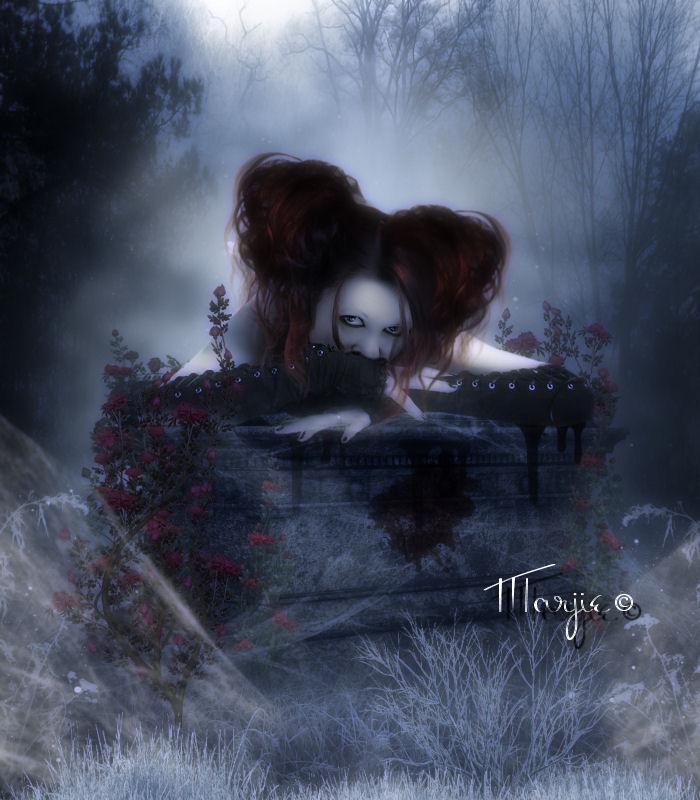 Crepuscule by Marjie79