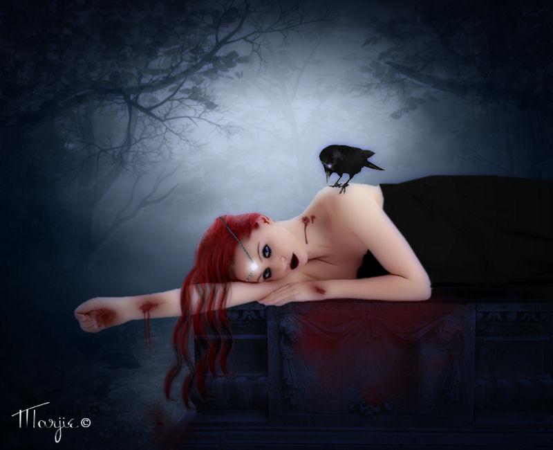 Vampire Et Crow by Marjie79