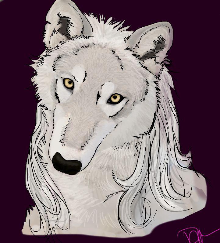 Silver Beauty by Riverwolfen89