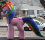 Breast Cancer Awareness Pony