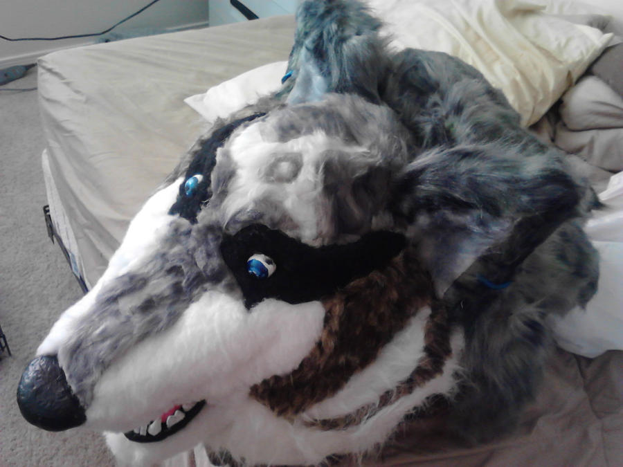 wolf_link_head_finished_by_f_l_i_t-d5myhv8.jpg