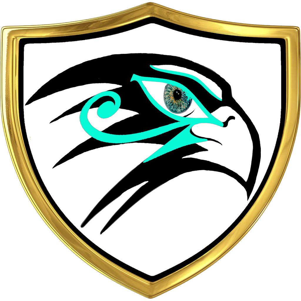 Hawk Logo Maker  Best Hawk Logos  BrandCrowd