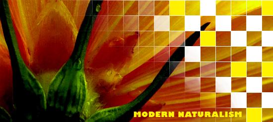 Modern Naturalism by trisquitman