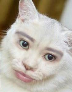 iamjoanna's Profile Picture