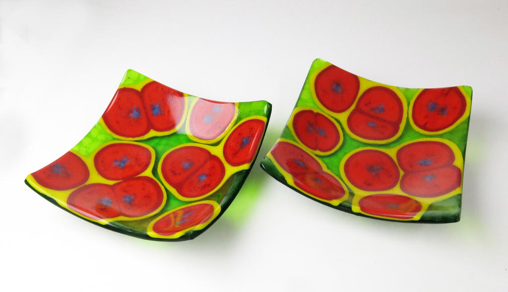 Staphylococcus aureus bacteria Fused Glass Dishes by trilobiteglassworks