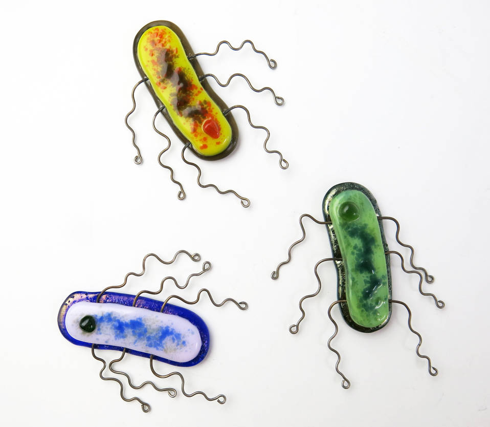 E. coli Bacteria Fused Glass Pins by trilobiteglassworks