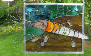 Orthoceras Stained Glass Panel