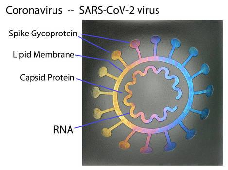 Coronavirus Fused Glass Bowl