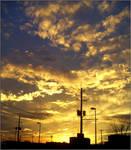powerline sunset