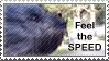 Speed stamp by turusai