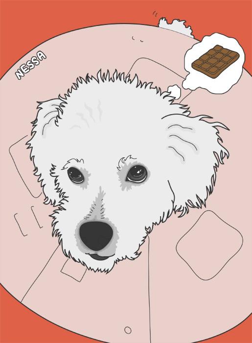 Pet Illustration: Nessa by turusai
