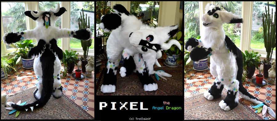 Pixel the Dutch Angel Dragon (fursuit) by TrelDaWolf