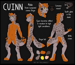 Cuinn reference sheet -commission-