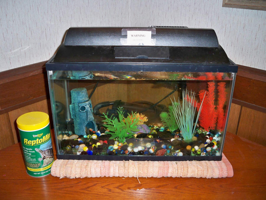 10 gallon aquarium by thefishguide on deviantart for 10 gallon fish tank stocking ideas