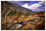 Karkonosze Mountains no81