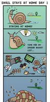 Snail Day 1