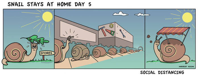 Snail stays at home day 5