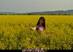Miha3lla model in yellow flower field  (2)