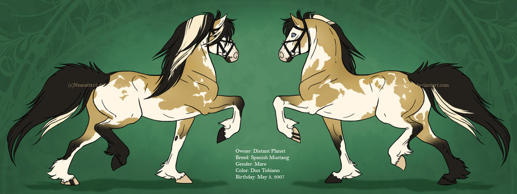 DP's Horse Character Sheet by Neara-works