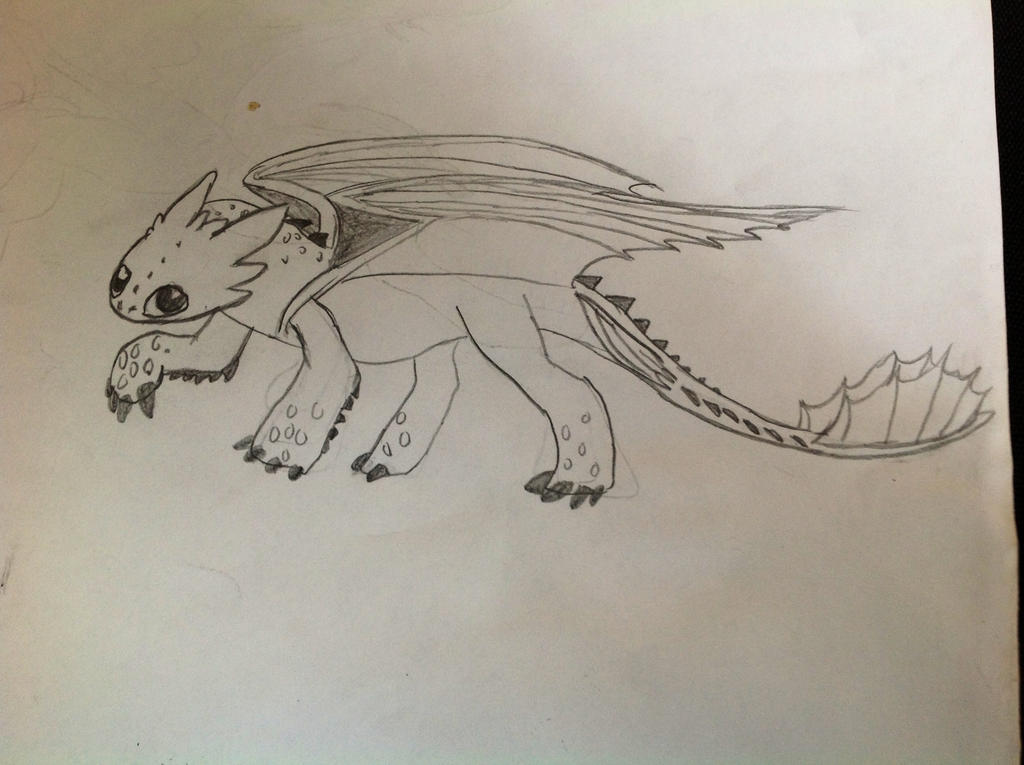 Images Of Night Fury Drawing Gepezz