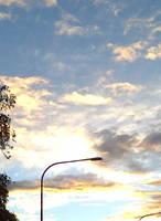 Afternoon Sun by wildspark
