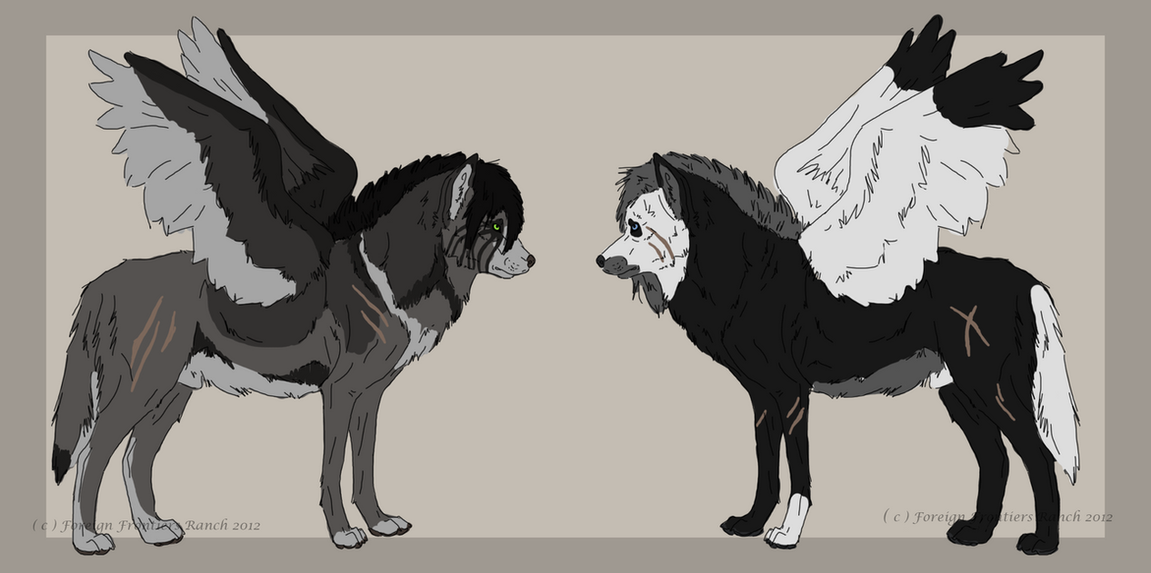 Winged wolf - auction 1 [OPEN] by ForeignFrontierRanch
