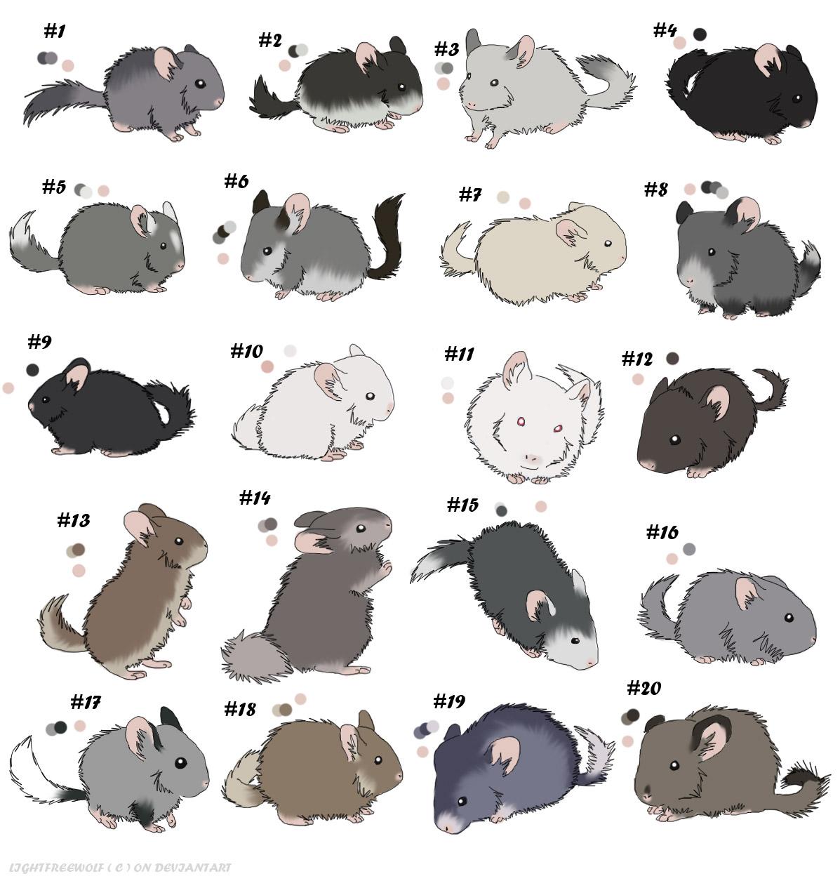 cute rabbit wallpaper