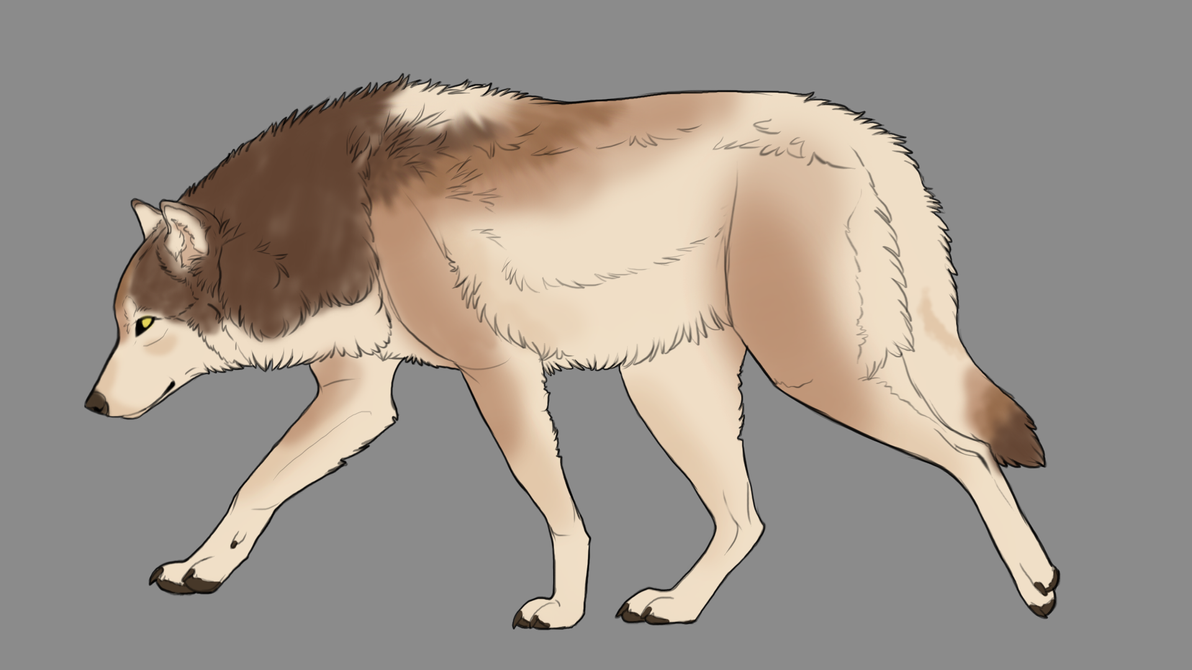 Natural wolf auction 13 by ForeignFrontierRanch