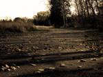The Sorrowful Path Ahead by argodaemon