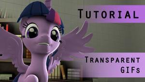 SFM Tutorial: Transparent GIFs