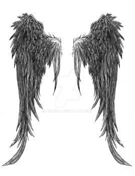 wings.... matz