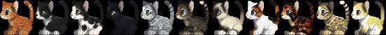 Free cat Icons